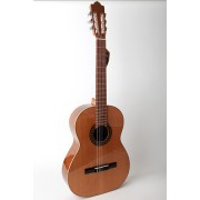 Paterna P50 by Raimundo Classical Guitar
