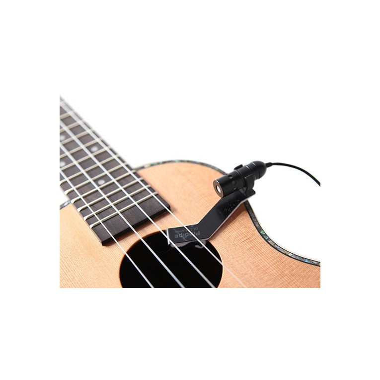 prodipe gl21 acoustic guitar microphone guitar from spain. Black Bedroom Furniture Sets. Home Design Ideas