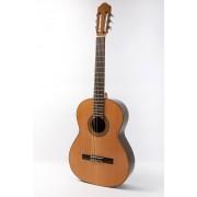 Raimundo 118 Guitarra clasica