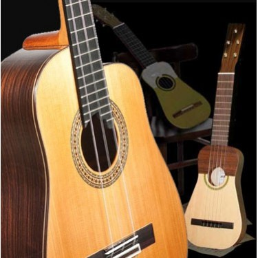 Other Stringed