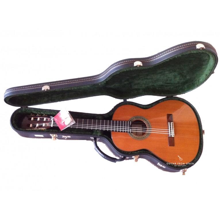 guitar case alhambra 9569 for requinto guitars 1 2. Black Bedroom Furniture Sets. Home Design Ideas