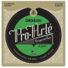 D'Addario EJ25C Pro-Arté Clear Nylon. Flamenco guitar strings