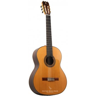 Alhambra 10FP PIÑANA Guitare Flamenco Negra