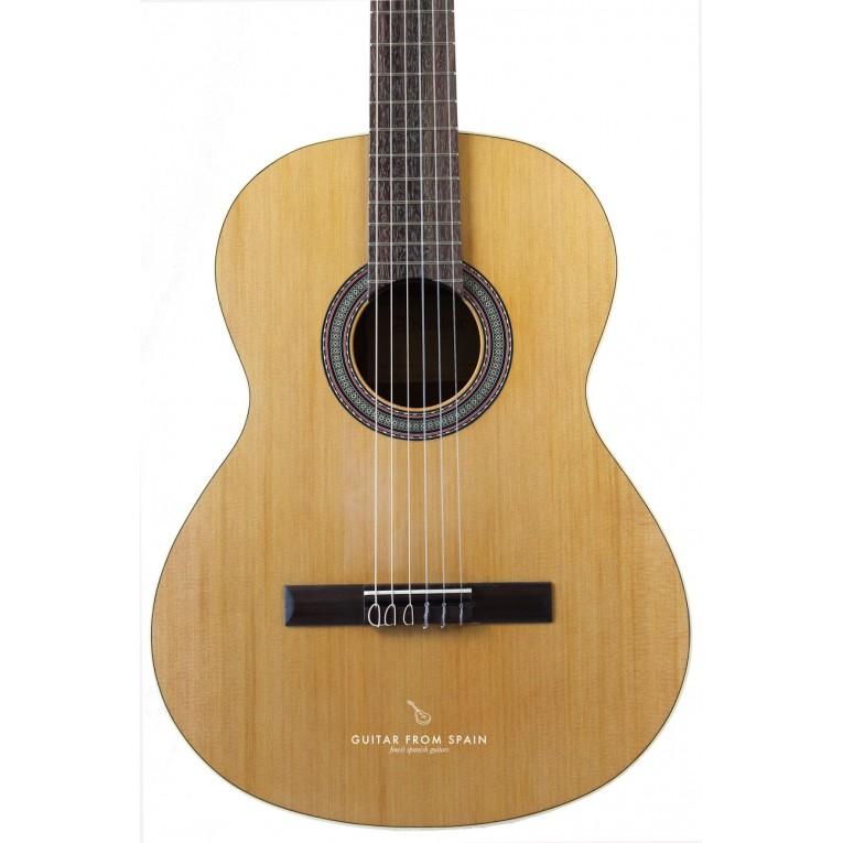 alhambra z nature guitare classique alhambra guitares au. Black Bedroom Furniture Sets. Home Design Ideas