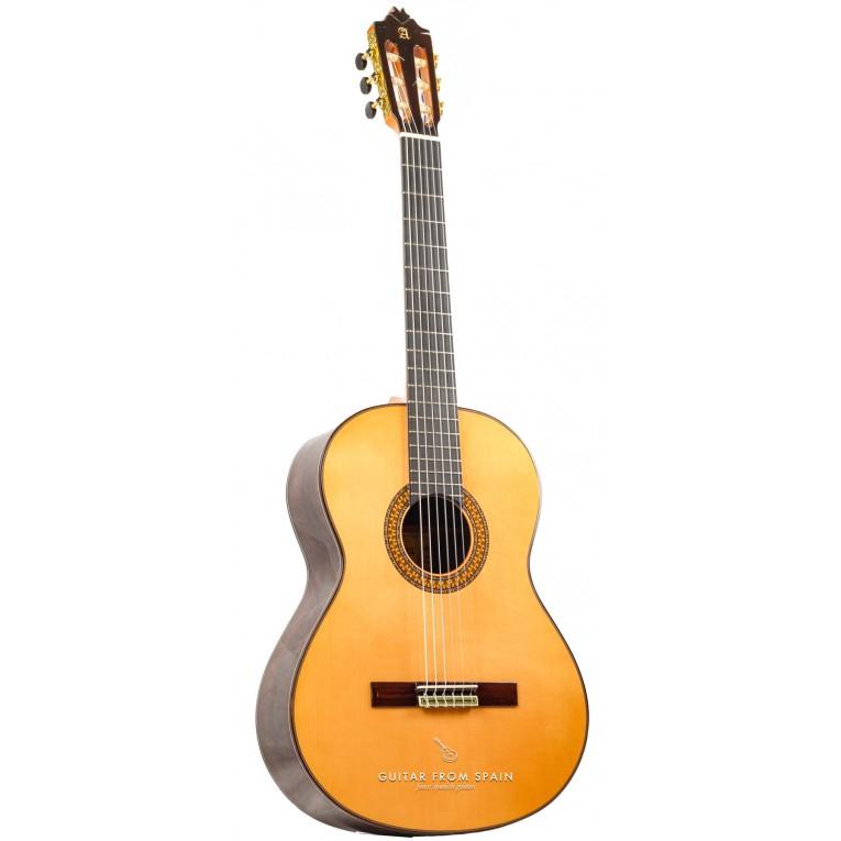 alhambra 9p guitare classique meilleurs prix pour guitares alhambra. Black Bedroom Furniture Sets. Home Design Ideas
