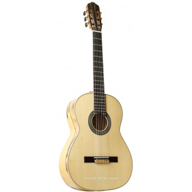 Raimundo 133 Ebano Blanco Klassische Gitarre