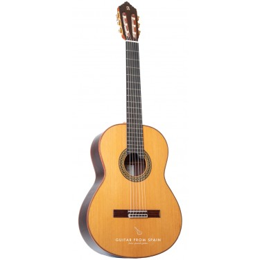 Alhambra Premier Pro Madagascar Konzertgitarre