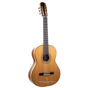 Manuel Rodriguez MR JR Exotic 20 years old Guitarra clásica