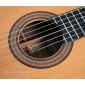 Raimundo 180 Konzertgitarre